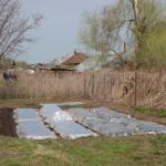 Огород и кусок нового забора
