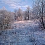 Деревня. Утренний снег.